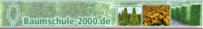 Baumschule-2000.de - Bäume und Pflanzen wie Taxus, Thuja, Kirschlorbeer und mehr.-Logo